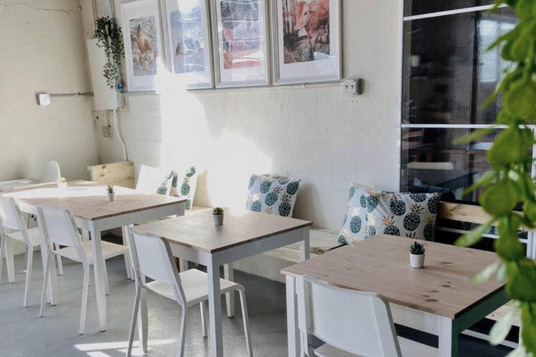 best vegan restaurants puerto rico frescura vegan kitchen Luxa Terra